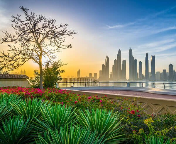 living-and-working-in-abu-dhabi-blog